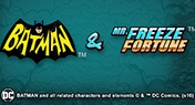 Batman vs Mr Freeze Fortune
